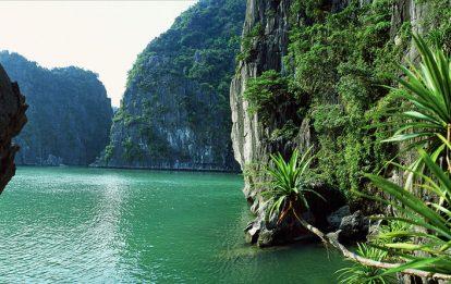 Découverte de la Baie d'Halong