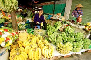 Marché coloré Baie d'Halong